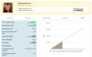 Nano 2013 stats, day 10