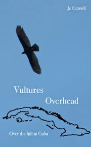 VulturesOverhead