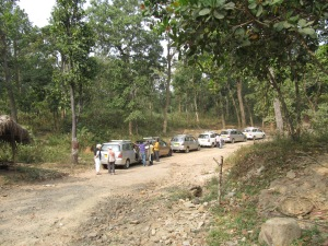 Our cars in India