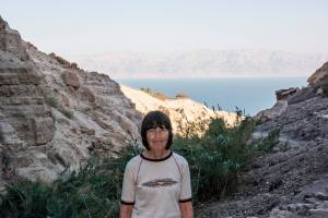 Nahal David with Dead Sea in background