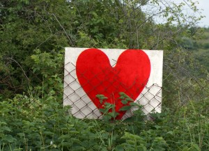 Love Fenced In